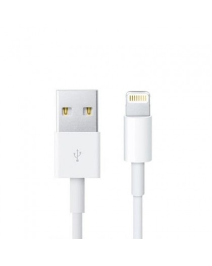 Lightning to USB cable 1 meter